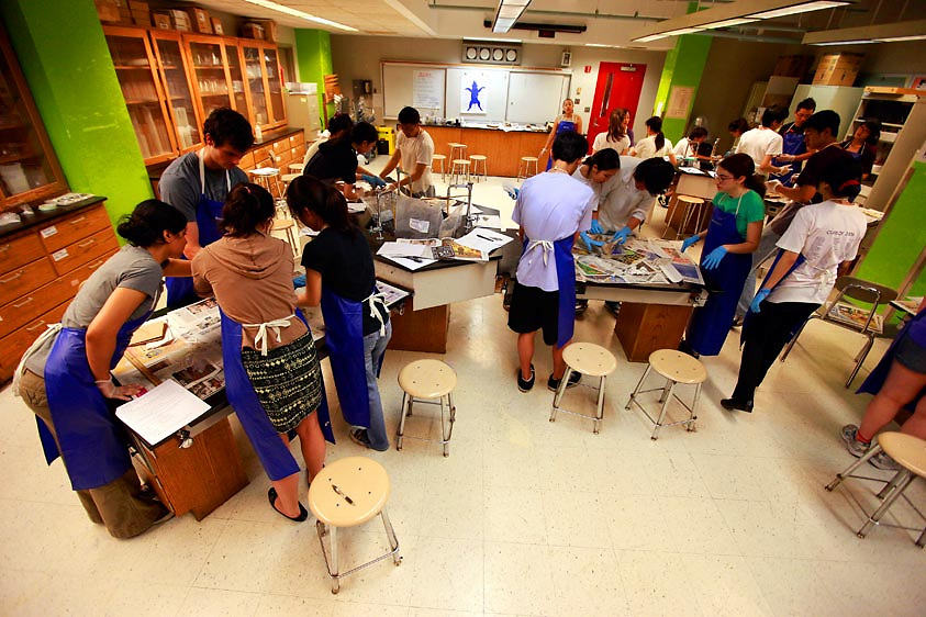 Baruch College Campus High School seniors in an AP Biology class dissect fetal pigs during their lab class in Manhattan, NY on Wednesday, May 26, 2010.