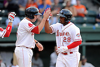 Designated hitter Carlos Mesa (28) of the Greenville Drive in a game against the Charleston RiverDogs on Monday, June 29, 2015, at Fluor Field at the West End in Greenville, South Carolina. Greenville won, 4-2. (Tom Priddy/Four Seam Images)