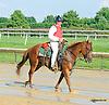 Lance at Delaware Park on 8/19/15
