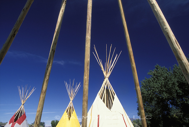 Native American Tipis (Tepees) set up for Pow Wow