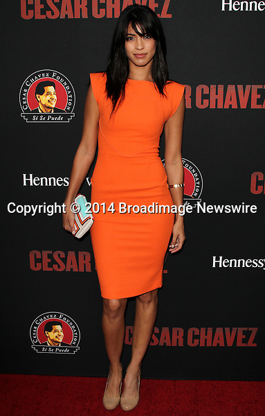 Pictured: Stephania Sigman<br /> Mandatory Credit &copy; Frederick Taylor/Broadimage<br /> Premiere Of Pantelion Films And Participant Media's &quot;Cesar Chavez&quot; - Arrivals<br /> <br /> 3/20/14, Hollywood, California, United States of America<br /> <br /> Broadimage Newswire<br /> Los Angeles 1+  (310) 301-1027<br /> New York      1+  (646) 827-9134<br /> sales@broadimage.com<br /> http://www.broadimage.com