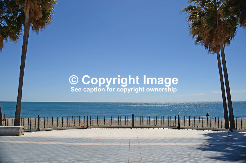 Mediterranean Sea, palms, palm trees, promenade, San Pedro de Alcantara, Marbella, Spain, 201403263093<br />