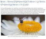 Review - Tamron SP AF90mm F/2.8 Di Macro 1:1 & Tamron SP 90mm F/2.8 Macro 1:1 Di VC USD<br /> <br /> http://widescenes.blogspot.com.au/