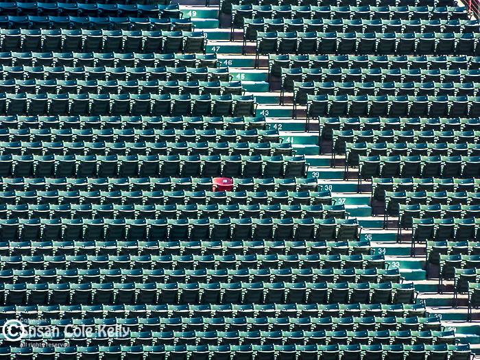 Special spectator seat at Fenway Park, home of the Boston Red Sox, Boston, Massachusetts, USA