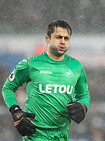 Goalkeeper Lukasz Fabianski of Swansea City during the Premier League match between Swansea City and Tottenham Hotspur at the Liberty Stadium, Swansea, Wales on 2 January 2018. Photo by Mark Hawkins / PRiME Media Images.