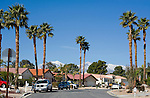 Homes with palm trees and snow on mountains in Palm Desert, CA