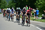 The peloton at 48km during Stage 8 of the 104th edition of the Tour de France 2017, running 187.5km from Dole to Station des Rousses, France. 8th July 2017.<br /> Picture: ASO/Pauline Ballet | Cyclefile<br /> <br /> <br /> All photos usage must carry mandatory copyright credit (&copy; Cyclefile | ASO/Pauline Ballet)