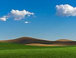 The Palouse, Whitman County, WA: Abstract patterns of rolling wheat fields