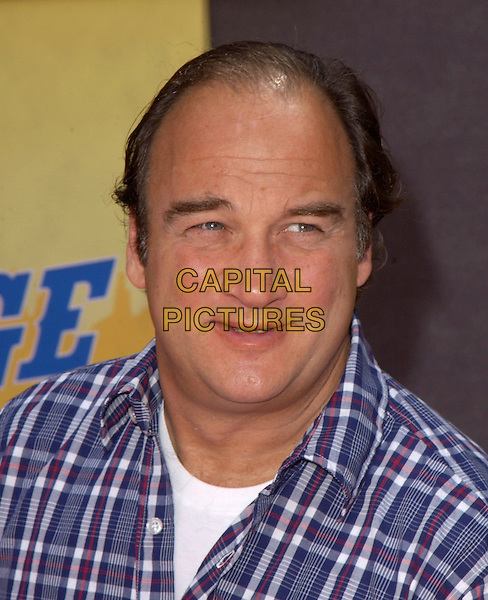 JIM BELUSHI.Home on The Range world premiere at The El Capitan Theatre in Hollywood, California .21 March 2004.*UK Sales Only*.www.capitalpictures.com.sales@capitalpictures.com.©Capital Pictures.