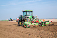 Cultivating for potatoes - Lincolnshire, April