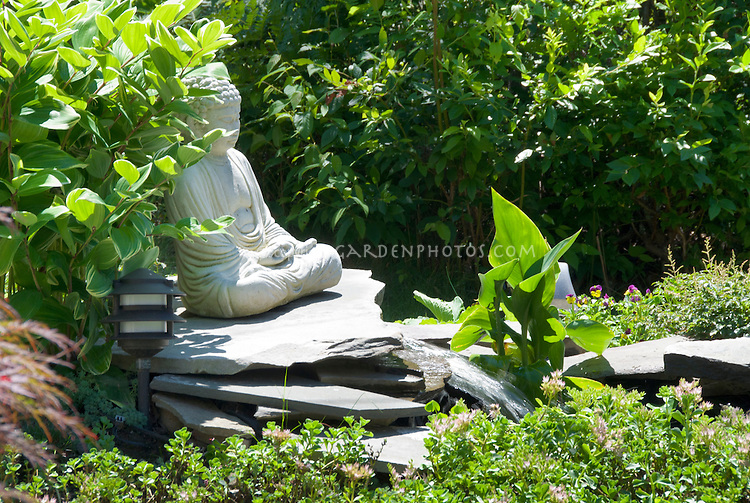Buddha religious statue with Polygonum Solomon's Seal and waterfall garden