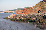 Rock armour placed at foot of crumbling red sandstone cliffs to control rate of coastal erosion, Watchet, Somerset, England