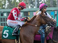 CYPRESS, CA. JULY 8: #5 Skye Diamonds ridden by Tiago Pereira in the post parade of the Great Lady M Stakes (Grade ll) on July 8, 2017 at Los Alamitos Race Course in Cypress, CA (Photo by Casey Phillips/Eclipse Sportswire/Getty Images)