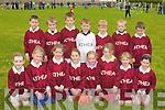 UNDER 8S: The Athea under 8s who played in the Ballydonoghue Football Blitz at Ballydonoghue GAA Grounds on Saturday. Front l-r: Rachel Greaney,Olivia Twomey, Clair Carmody, Grace Ryan, Laura Dalton, Aibhilin Murphy, Sarah O'Connor and Ciara O'Shea. Back l-r: John Sexton,Jason Dillon,Alex McEldowney,Jack O'Connor,David O'Connor, Evan Wallace and Eoin O'Shea.... ....