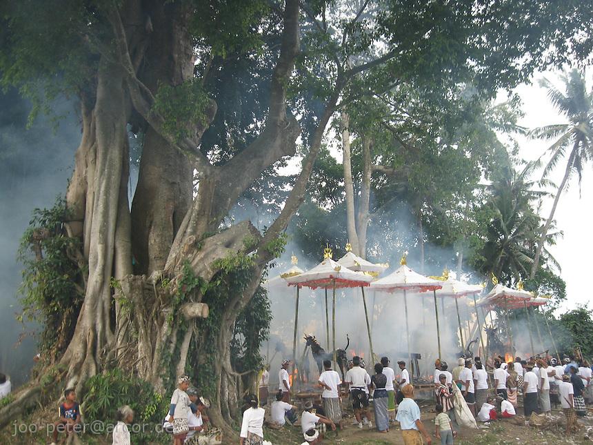 cremation ceremonies in process in village Mas, Bali, archipelago Indonesia