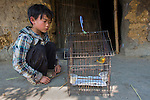 Boy with a songbird in a cage, Vietnam