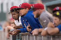 Lansing Lugnuts designated hitter Vladimir Guerrero Jr. (27) watches from the dugout the Midwest League baseball game against the Bowling Green Hot Rods on June 29, 2017 at Cooley Law School Stadium in Lansing, Michigan. Bowling Green defeated Lansing 11-9 in 10 innings. (Andrew Woolley/Four Seam Images)