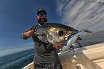live target mackerel