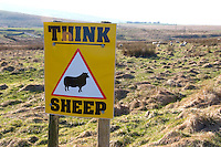 Think Sheep sign, North Yorkshire.