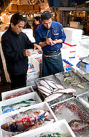 Buying fish at Tsukiji Fish Market