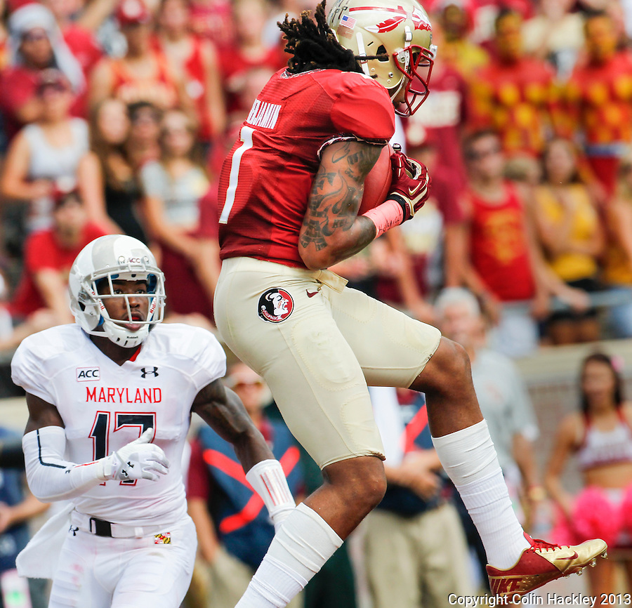 TALLAHASSEE, FLA.10-05-13-FSU-MARY100513CH-Florida State's Kelvin Benjamin catches a touchdown pass as Maryland's Isaac Goins can only watch during second half action Saturday at Doak Campbell Stadium in Tallahassee. The Seminoles beat the Terrapins 63-0.<br /> COLIN HACKLEY PHOTO