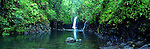 Wainabau Falls, Taveuni, Fiji Islands<br />