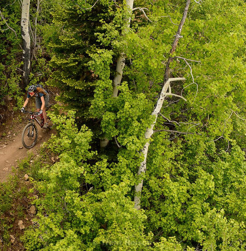 Trent Nelson  |  The Salt Lake Tribune<br /> A mountain biker at the Park City Mountain Resort, Saturday June 6, 2015.