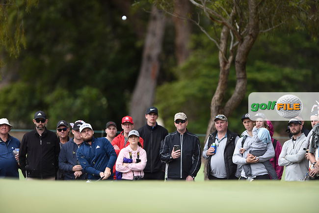 Tyrrell Hatton (ENG) during the 3rd round of the World Cup of Golf, The Metropolitan Golf Club, The Metropolitan Golf Club, Victoria, Australia. 24/11/2018<br /> Picture: Golffile | Anthony Powter<br /> <br /> <br /> All photo usage must carry mandatory copyright credit (© Golffile | Anthony Powter)