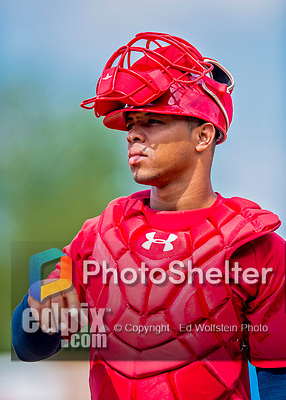 16 July 2017: Auburn Doubledays catcher Luis Vilorio works on pre-game drills prior to a game against the Vermont Lake Monsters at Centennial Field in Burlington, Vermont. The Monsters defeated the Doubledays 6-3 in NY Penn League action. Mandatory Credit: Ed Wolfstein Photo *** RAW (NEF) Image File Available ***