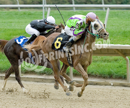 Celeztina winning at Delaware Park on 10/6/10