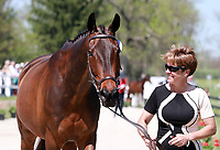 LEXINGTON, KY - April 26, 2017. #14 Who's A Star and Courtney Cooper from the USA at the Rolex Three Day Event First Horse Inspection at the Kentucky Horse Park.  Lexington, Kentucky. (Photo by Candice Chavez/Eclipse Sportswire/Getty Images)