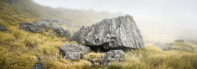 Rocks of Southern Alps in clouds with alpine vegetation, Westland Tai Poutini National Park, West Coast, South Westland, UNESCO World Heritage Area, New Zealand, NZ
