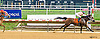 All In All  winning at Delaware Park on 8/25/16 All N All winning at Delaware Park on 8/25/16
