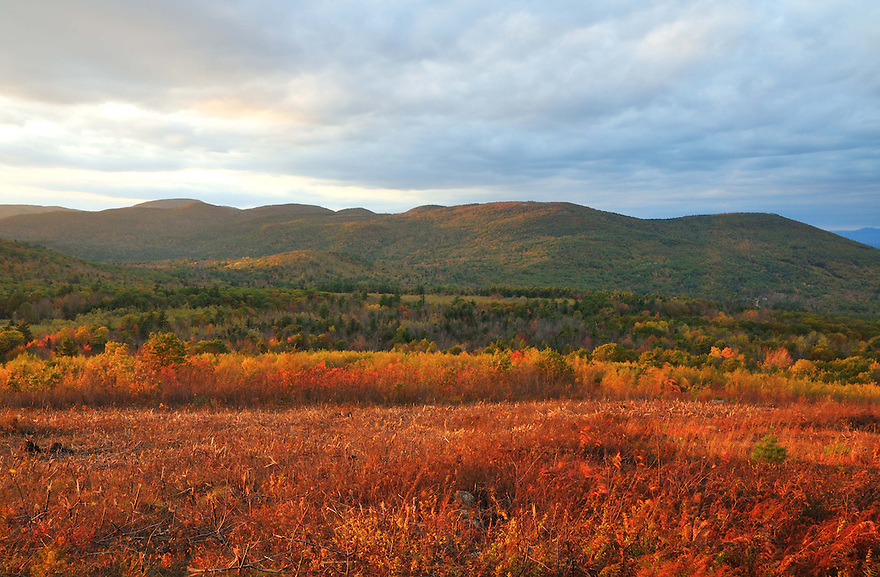 Late day light augments fall color at the Morse Preserve near Mt. Major, Alton, New Hampshire.
