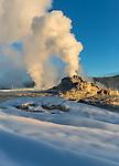Yellowstone National Park, Wyoming: Morning sun illuminates the erupting Castle Geyser, winter