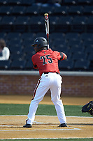 Josh Stowers (25) of the Louisville Cardinals at bat against the Wake Forest Demon Deacons at David F. Couch Ballpark on March 17, 2018 in  Winston-Salem, North Carolina.  The Cardinals defeated the Demon Deacons 11-6.  (Brian Westerholt/Four Seam Images)