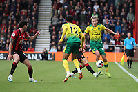 Todd Cantwell of Norwich City runs with the ball during the Premier League match between Bournemouth and Norwich City at Goldsands Stadium on October 19th 2019 in Bournemouth, England. (Photo by Mick Kearns/phcimages.com)<br /> Foto PHC/Insidefoto <br /> ITALY ONLY