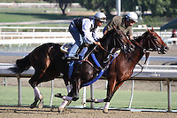 Lady of Shamrock (outside) working for trainer John Sadler at Santa Anita Park in Arcadia California