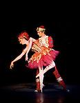 Birmingham Royal Ballet The Firebird