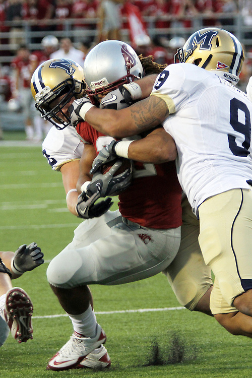 Chantz Staden (#22), Washington State senior running back, finds a lot of arms in his line of site during the Cougars 23-22 comeback victory over Montana State at Martin Stadium on the WSU campus on September 11, 2010.