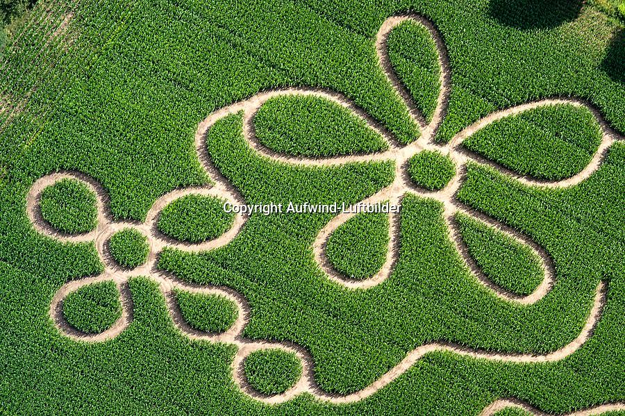 Maislabyrinth: DEUTSCHLAND, SCHLESWIG- HOLSTEIN 07.07.2004: Maislabyrinth