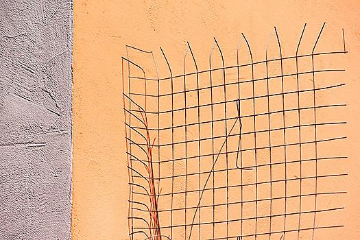 Chicken-coop wire in Pfalzel, Trier, Germany
