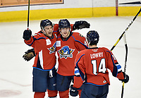 HERSHEY, PA - DECEMBER 01: Springfield Thunderbirds forward Harry Zolnierczyk (9), defenseman Jacob MacDonald (47), and forward Joel Lowry (14) celebrate after MacDonalds's second period goal during the Springfield Thunderbirds at Hershey Bears on December 1, 2018 at the Giant Center in Hershey, PA. (Photo by Randy Litzinger/Icon Sportswire)