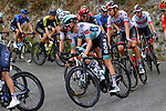 The peloton including Felix Grossschartner (AUT) Bora-Hansgrohe during Stage 1 of Tour de France 2020, running 156km from Nice Moyen Pays to Nice, France. 29th August 2020.<br /> Picture: Bora-Hansgrohe/BettiniPhoto | Cyclefile<br /> All photos usage must carry mandatory copyright credit (© Cyclefile | Bora-Hansgrohe/BettiniPhoto)
