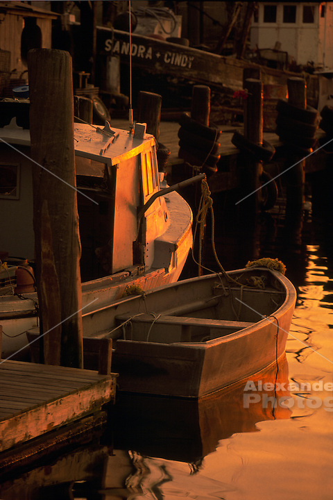USA - Newport, RI - Lobster boats and dory float in calm waters at Bowen's landing and the Aquidneck lobster co. with warm sunset light.
