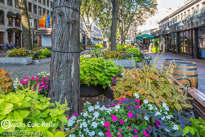 Faneuil Hall Marketplace, Boston, Massachusetts, USA