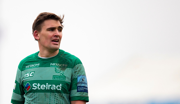 Newcastle Falcons' Toby Flood<br /> <br /> Photographer Bob Bradford/CameraSport<br /> <br /> Gallagher Premiership - Exeter Chiefs v Newcastle Falcons - Saturday 23rd February 2019 - Sandy Park - Exeter<br /> <br /> World Copyright © 2019 CameraSport. All rights reserved. 43 Linden Ave. Countesthorpe. Leicester. England. LE8 5PG - Tel: +44 (0) 116 277 4147 - admin@camerasport.com - www.camerasport.com