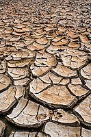 Cracked mud pattern, Monument Valley, Utah