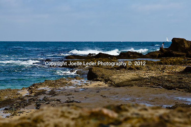 Joelle Leder Photography ©  2012