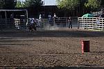 MFHS Barrels Rider 327